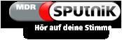 logo_sputnik_small_shadowed.png